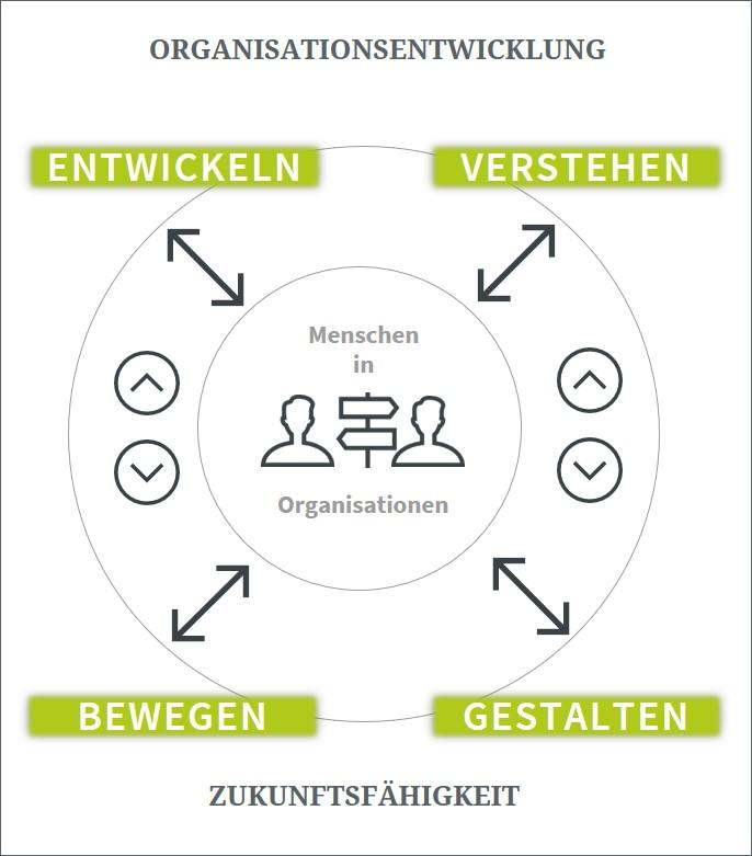 Modell Organisationsentwicklung